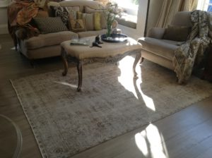 Decor Rugs